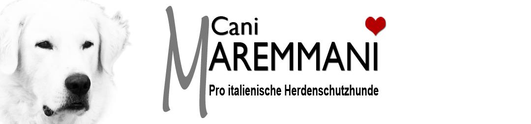 Cani Maremmani - Pro italienische Herdenschutzhunde